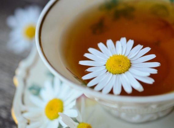gyógynövény tea