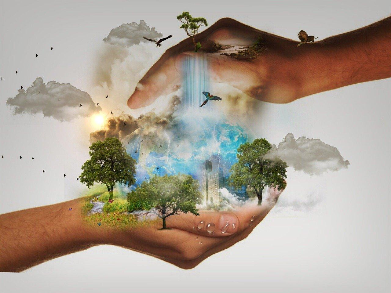 újévi fogadalom, egészségesebb,zöldebb, természetesebb, környezetbarátabb életmódért