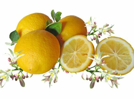 citrom illóolaj hatása párologtatása